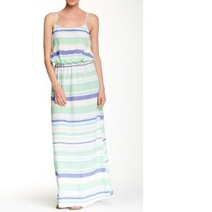 Dasha Sleeveless Printed Silk Maxi Dress